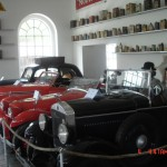 Múzeum 1