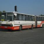 CIMG3453