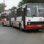 CIMG1308a
