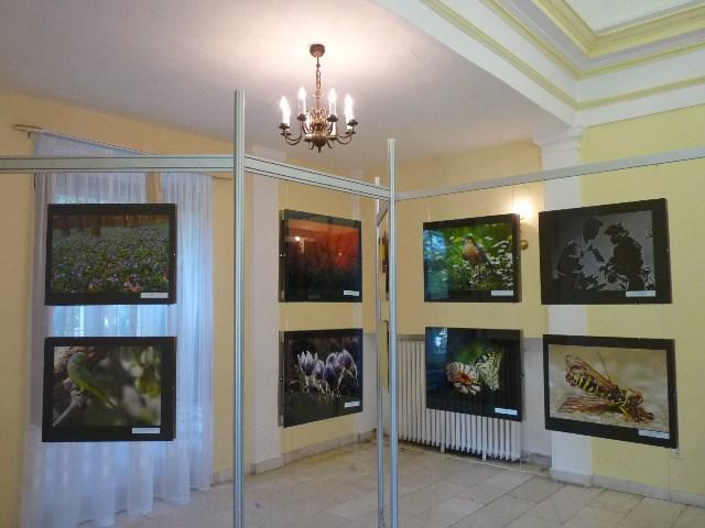 Fotografická výstava v zámku Topoľčianky
