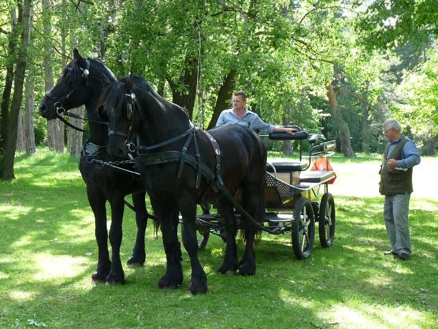 Návštevníci akcie mali možnosť odviezť sa na konskom povoze.