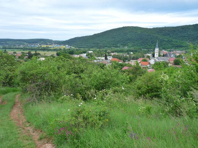 Pohľad na Plešivec zo Slovenského krasu
