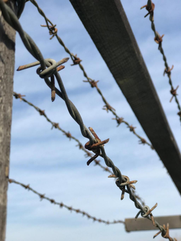 Ostatné drôty na hraniciach boli jedným zo symbolov neslobody v období socializmu.