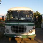 SANY0700